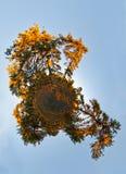 Planeta de la puesta del sol Imágenes de archivo libres de regalías
