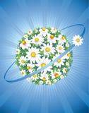 Planeta del vector de la margarita Fotos de archivo