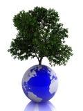 Planeta la tierra y el árbol Fotos de archivo