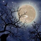 Planeta misterioso desconhecido contra o céu na noite ilustração stock