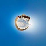 Planeta pequeno estereográfico do trenó do cão Fotos de Stock