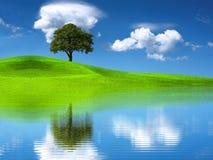Planeta verde Foto de Stock Royalty Free