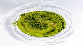 Planeta verde - concepto del lanzamiento 360 de verdes Fotografía de archivo libre de regalías