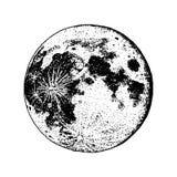 Planetas en Sistema Solar luna y astrología espacio astronómico de la galaxia órbita o círculo mano grabada dibujada en viejo ilustración del vector