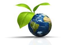 Planetenerde mit Blatt Stockbild
