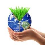 Planetjord med hand-rymt gräs fotografering för bildbyråer
