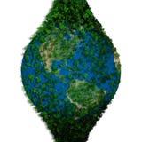 Planety ziemia zakrywająca z liśćmi Eco kula ziemska Obraz Stock