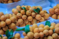 Plango frukt eller Marian Plum, berömd tropisk frukt i Thailand f Royaltyfria Foton