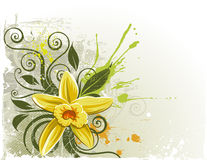 planifoliavanilj stock illustrationer
