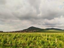 Planina de Podnozje Vrsackih, kula de Vrsacka imagens de stock royalty free