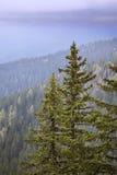 Planina Konjscica Alpi di Julian slovenia Immagini Stock Libere da Diritti
