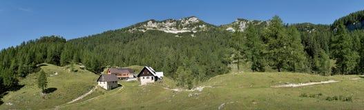 Planina Lipance qui sotto della sommità del vrh di Lipanjski nel parco nazionale di Triglav in Julian Alps in Slovenia Fotografia Stock