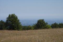 Planina Povlen u srbiji-berg Povlen i Serbien royaltyfri fotografi