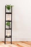 Plank met installaties en lantaarns Stock Afbeelding