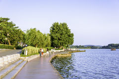 The plank path along the lake stock images