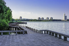 The plank path along the lake stock photography