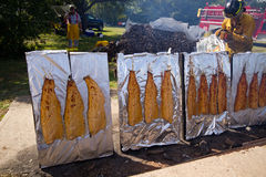 Plank salmon cooking over open fire Royalty Free Stock Photos