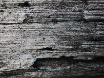 Plank Texture Stock Image