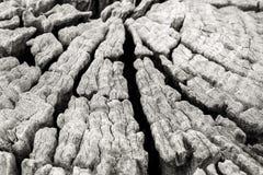 Plank van Grungy zeer éénjarigenhout royalty-vrije stock foto's