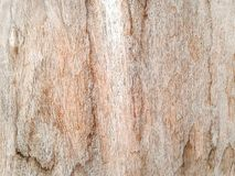Plank wall Stock Image