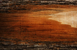 Plank of wood with bark. Royalty Free Stock Photography