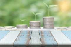 Plank wood or table top with blurred Growing money concept. Royalty Free Stock Image