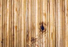 Planka av trä gammalt och sprucket Yttersidan är grov och ojämn Royaltyfri Foto