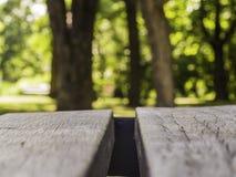 Plankabänk på en bakgrund av suddiga träd arkivbilder