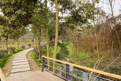 Planked footbridge and flagstone pavement along stream Stock Photo