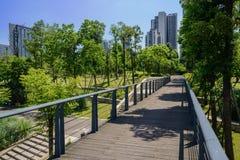 Planked footbridge in verdant modern city of sunny summer Stock Image