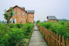 Planked footpath before European-style wooden houses in orchard Stock Image