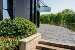 Planked path and verdant pond outside modern building in sunny s Royalty Free Stock Images