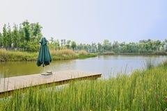 Planked-Pier nahe schilfigem lakeshore im sonnigen Frühling Lizenzfreie Stockfotos