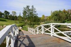 Planked spång med balustrader över sjön i den soliga hösten af arkivbild