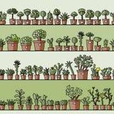 Planken met cactus in potten, naadloos patroon Royalty-vrije Stock Foto