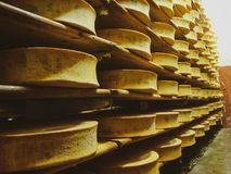 Planken met smakelijke kant-en-klare kaas in de kelder bij een kleine kaaszuivelfabriek royalty-vrije stock afbeelding