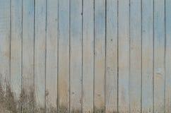 Planking Στοκ φωτογραφίες με δικαίωμα ελεύθερης χρήσης