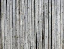 plankmuur Stock Foto