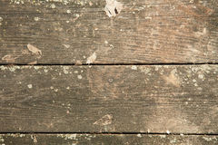 plankor ridit ut trä Royaltyfria Foton