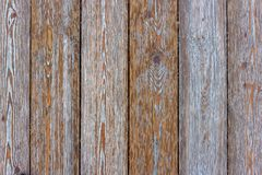 plankor texture tr? fotografering för bildbyråer