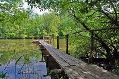 Planks across the river Stock Photo