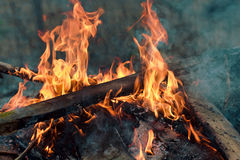 Planks burning in bonfire. An outdoor campfire close-up Stock Photo