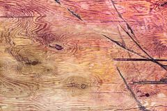 Abstract background of an old wooden wall with a bright texture. stock images