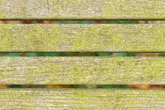 Planks with green moss Royalty Free Stock Photography