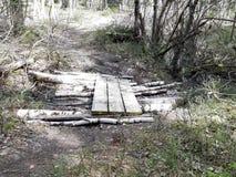 Planks over det path. Planks over det. Natur, may, garden, parks, stone, green, brown stock image