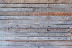 Planks Texture. Multi colour wooden planks texture Stock Images