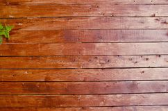 Planks wall background. Royalty Free Stock Photo