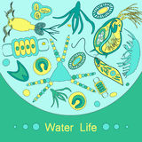 Plankton phytoplankton zooplankton outline Stock Photo