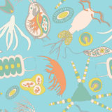 Plankton seamless pattern Stock Images