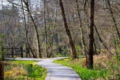 Plankway door bos rond briese rivier royalty-vrije stock afbeelding